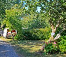 Camping Du Pouldu : Emplacement