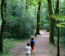 Camping Du Pouldu : Pouldu chemin